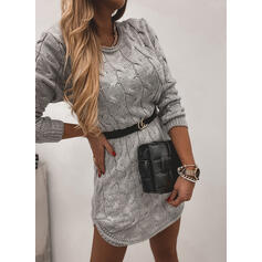 Solid Long Sleeves Bodycon Above Knee Casual Sweater Dresses