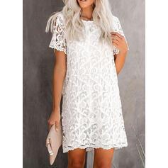 Lace/Solid Short Sleeves Shift Above Knee Little Black/Casual/Elegant Dresses