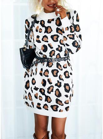 leopar Mâneci Lungi gündelik Elbiseler